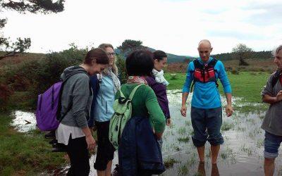 RECORRIDOS | FOREST MINDFULNESS 21 de ABRIL