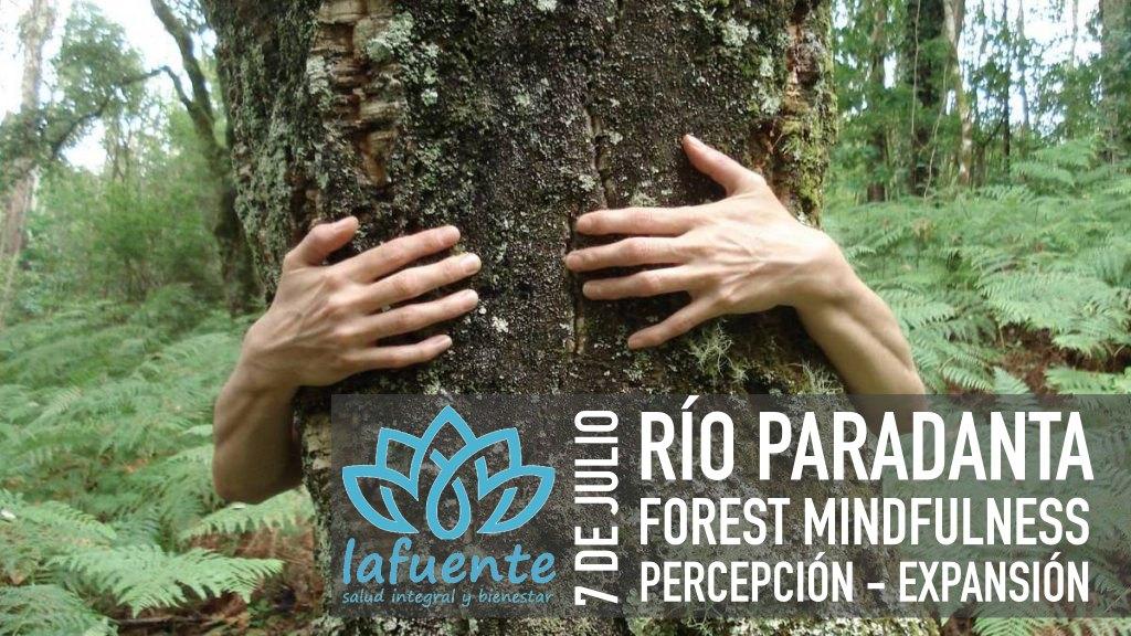 DÍA FOREST MINDFULNESS – 7 JULIO