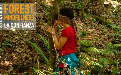 FOREST MINDFULNESS – LA CONFIANZA